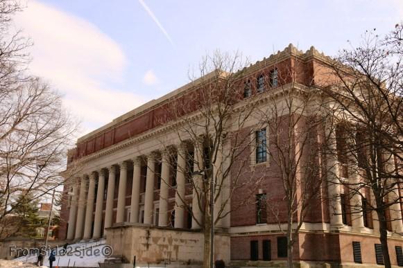 Harvard 13