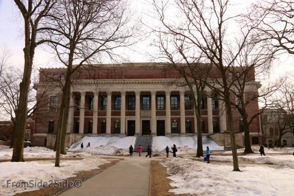 Harvard 15