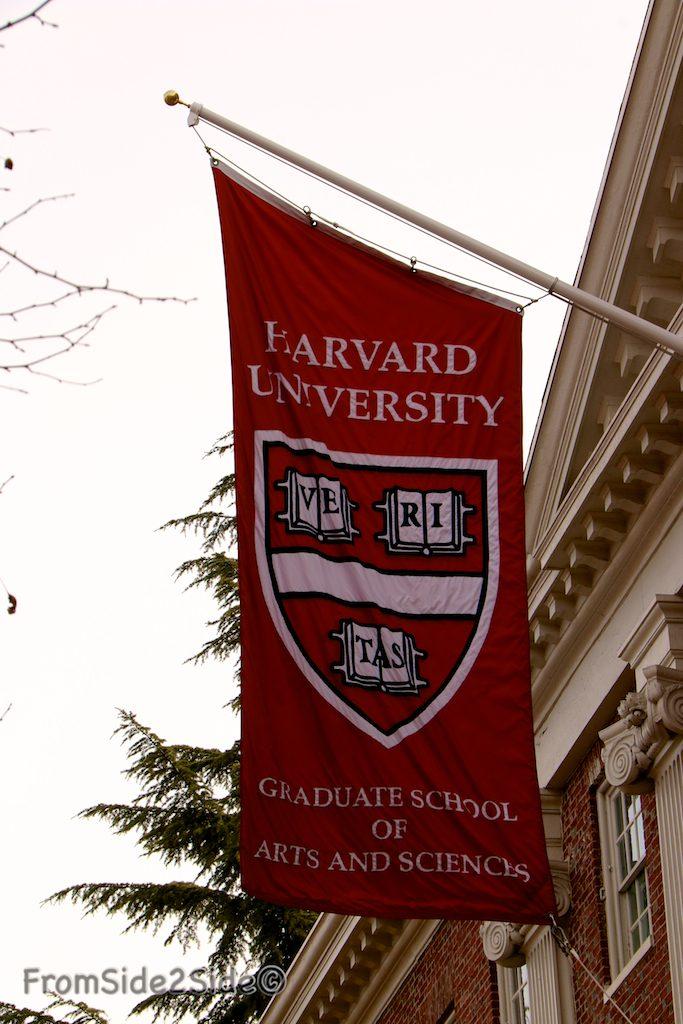 Harvard 29
