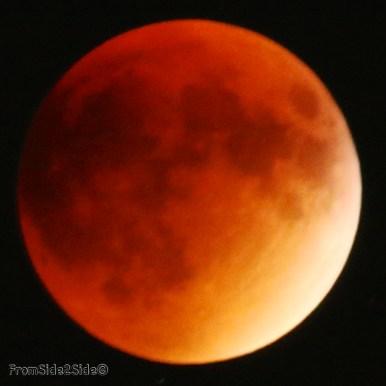 eclipse lune 2015 42