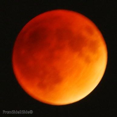 eclipse lune 2015 45