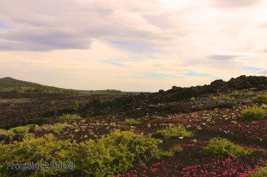 craters of the moon 35