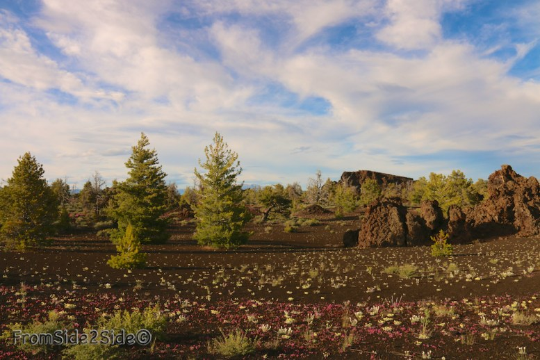 craters of the moon 47