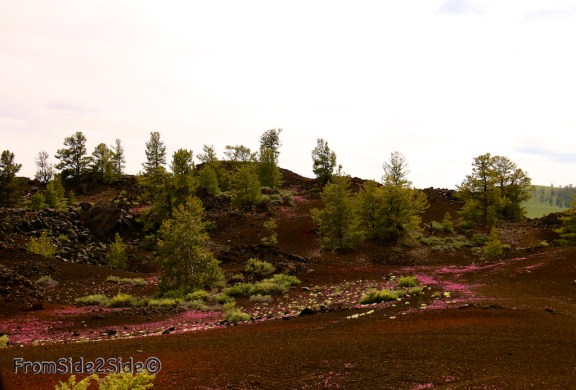 craters of the moon 5
