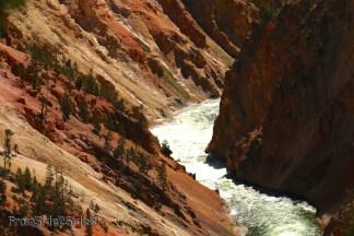 Grand Canyon Yellowstone 5