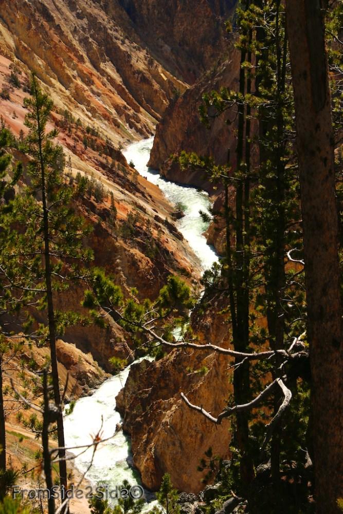 Grand Canyon Yellowstone 6