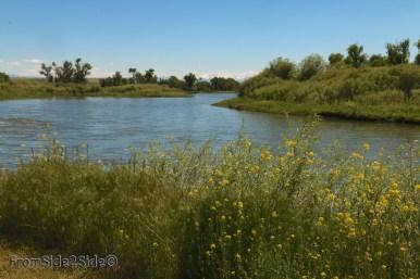 confluent entre la Jefferson River et la Madisson River