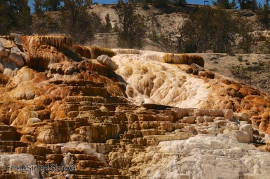 yellowstone par le nord 10
