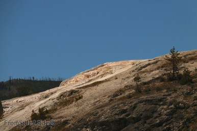 yellowstone par le nord 12