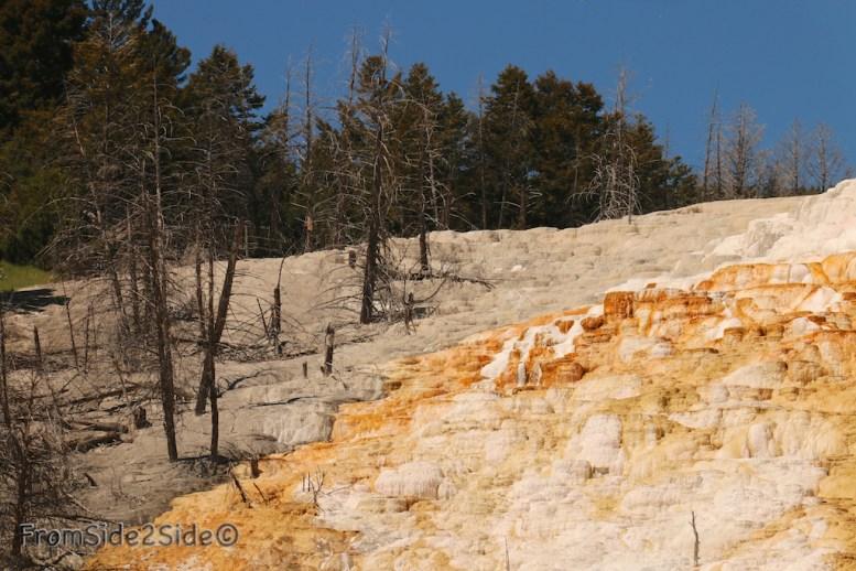 yellowstone par le nord 21
