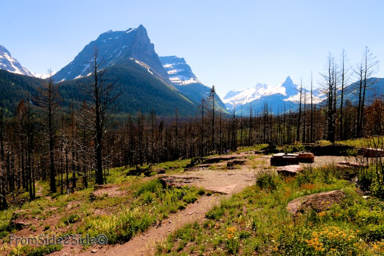 Glacier National Park 7