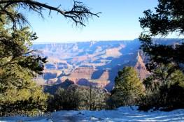 Grand Canyon 2 (1)