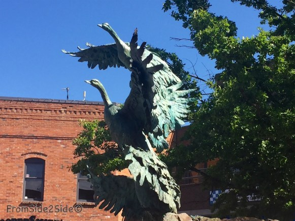 FortCollins 15