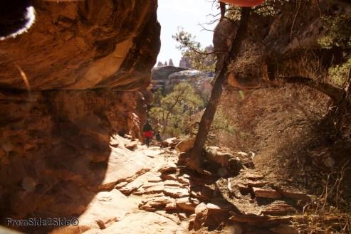 Canyonlands-Needles 44
