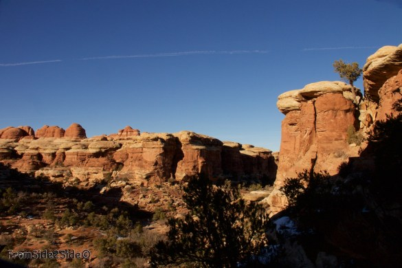 Canyonlands-Needles 46