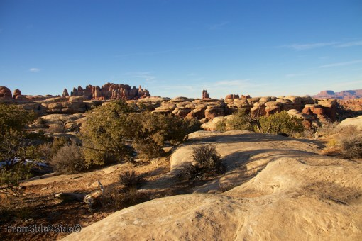 Canyonlands-Needles 53