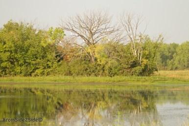 baker_wetlands 1