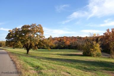 automne-SM-park 7