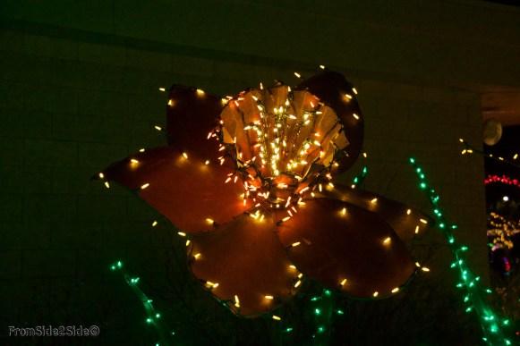 Fort Collins Noël 12