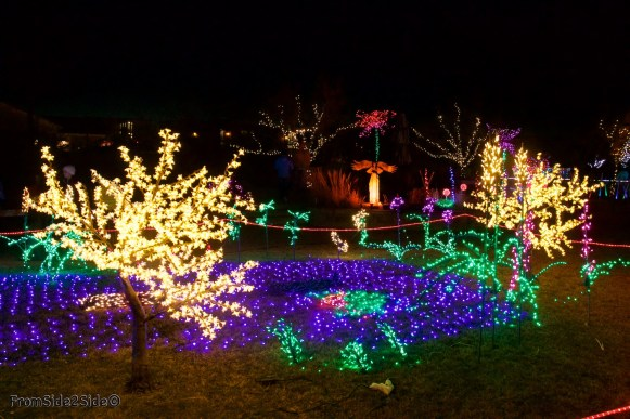 Fort Collins Noël 22
