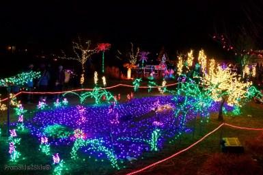Fort Collins Noël 23