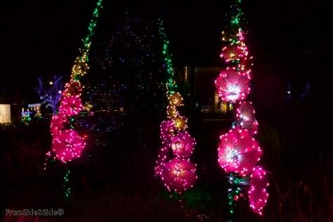 Fort Collins Noël 8