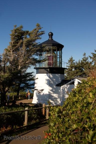 Oregon-coast 20