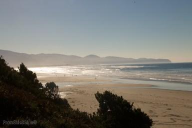 Oregon-coast 7