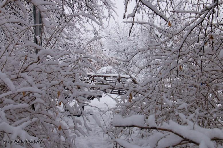 neige-jan-19 1