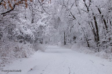 neige-jan-19 2 (1)