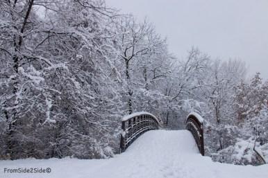 neige-jan-19 24