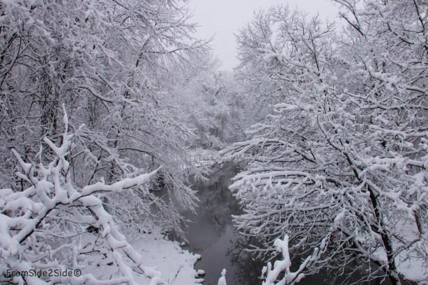 neige-jan-19 5