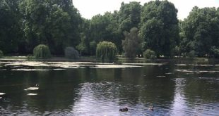Lago de St James's Park