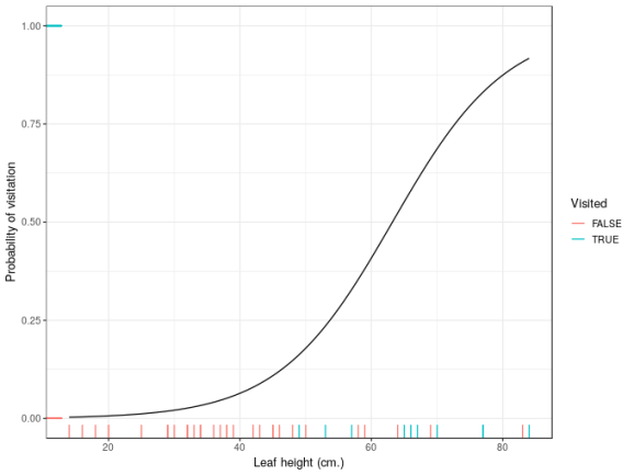 Estimated probability of visitation as a function of leaf height.