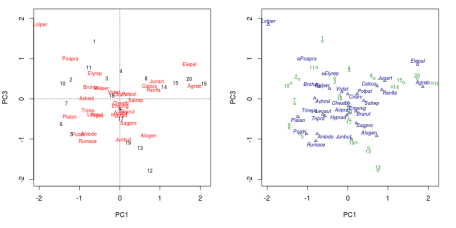 PCA biplot of the Dutch dune meadow data produced using the default plot() method (left) and the plot() method for ordipointlabel() (right)
