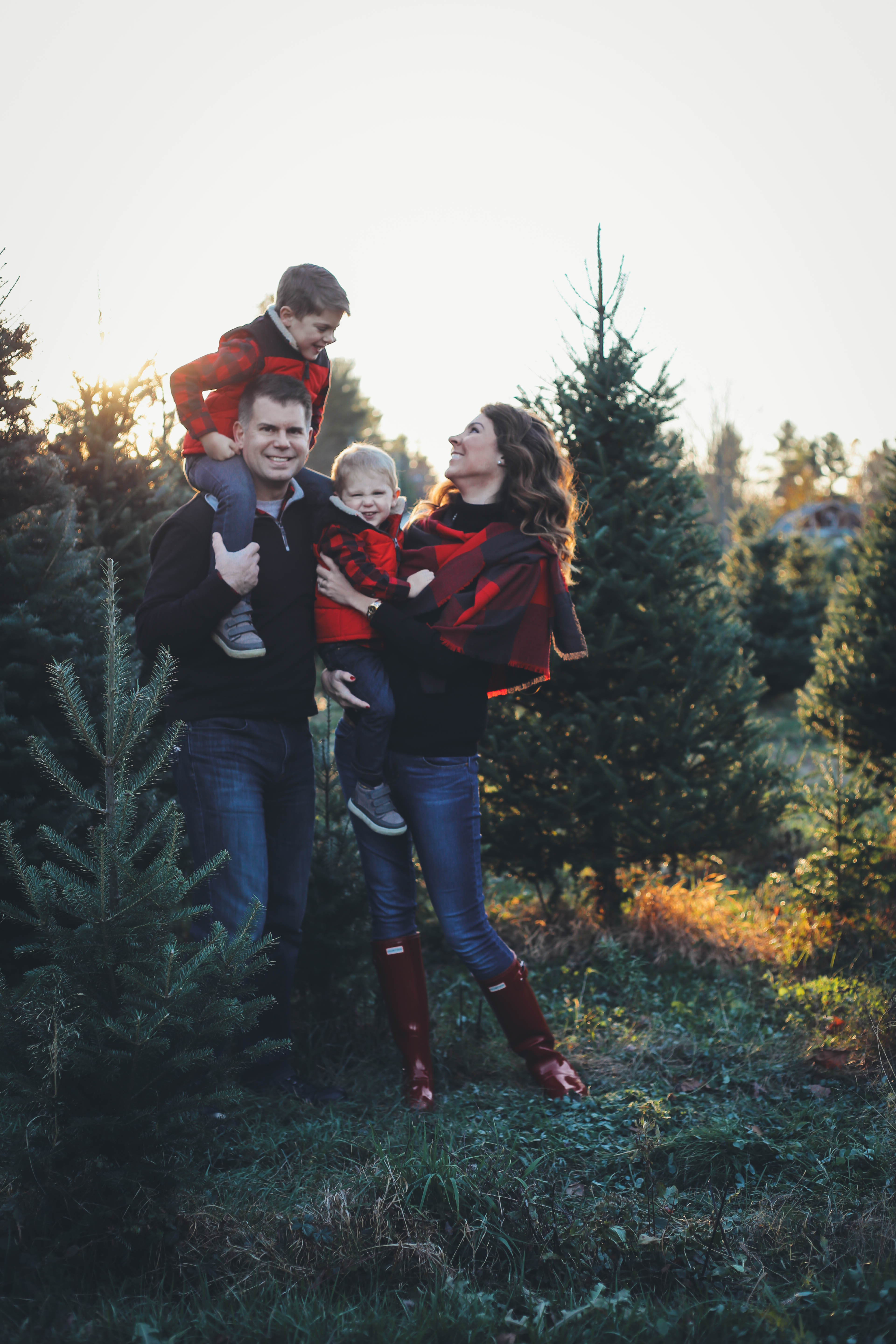 Merry Christmas Tree Farm Family Pictures From The