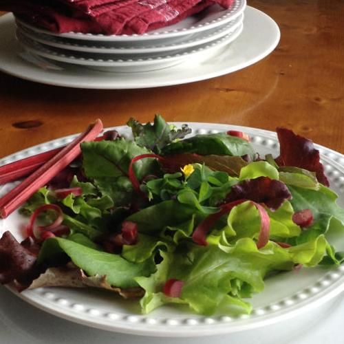 tangy spring salad 4