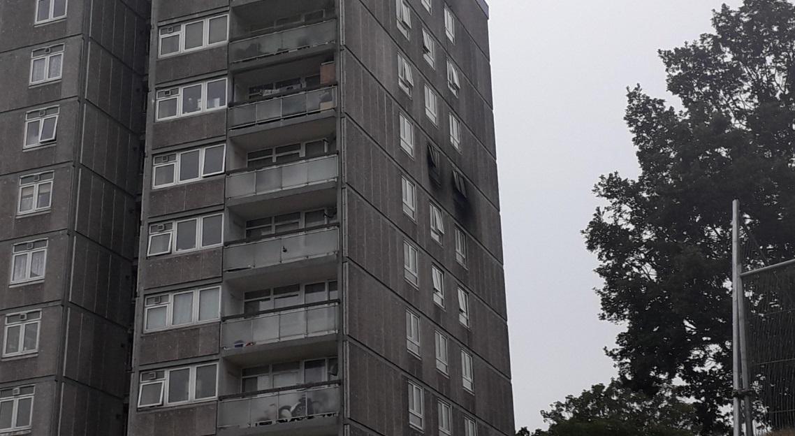 Dog dies in Plumstead tower block fire