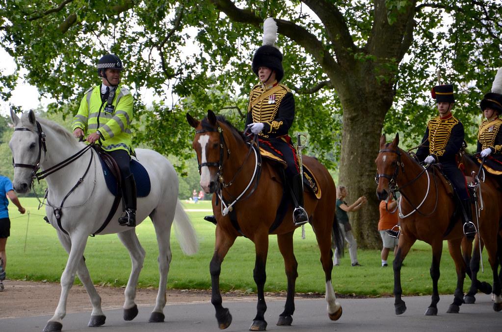 Incident sees King's Troop horses scatter across Charlton