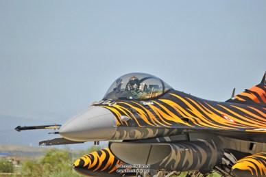 NATO Tiger Meet 2016 - Zaragoza (36)