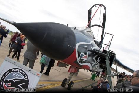 tornado-special-color-reparto-sperimentale-volo-aeronautica-militare-15