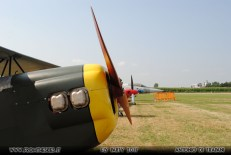 Fly Party 2017 -1 - (7)