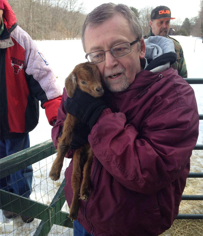 My Dad Seeing A Baby Goat For The First Time
