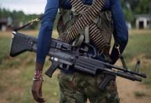 grupos armados Táchira violencia
