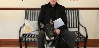 Biden perros mascotas