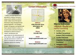 Trifold Brochure for Insightful Minds LLC
