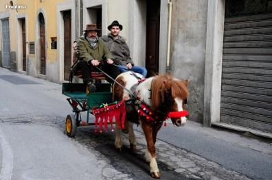 Cavalli-Infiocchettati-2015-foto-Fabrizi-04