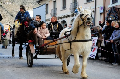 Cavalli-Infiocchettati-2015-foto-Fabrizi-14