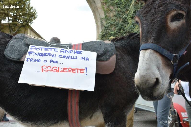 Protesta-Ippoterapia-10-ottobre-2015-foto-Massimo-Renzi-01