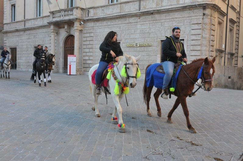 [29.01.2017] Cavalli infiocchettati - Rievocazione Storica MAS_6296
